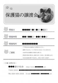 保護猫の譲渡会のご案内のチラシテンプレート書式(白黒)・Word