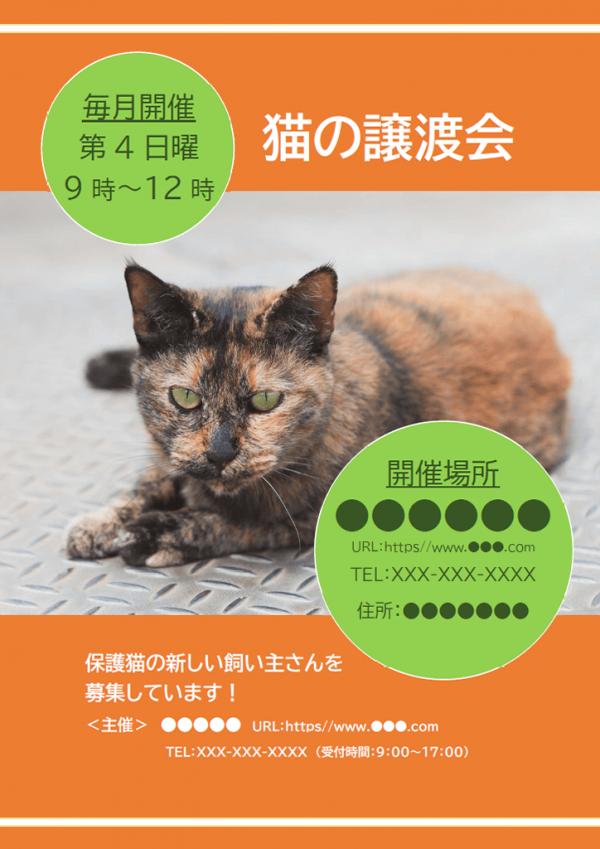 猫の譲渡会のご案内のチラシテンプレート書式・Word